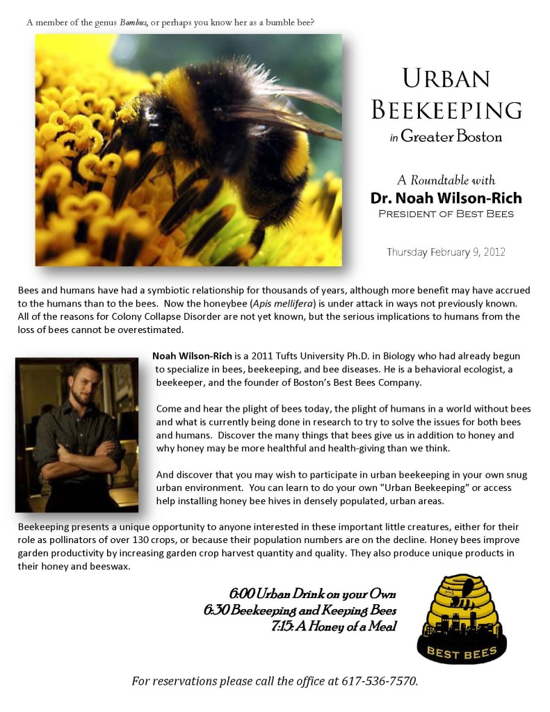 Best Bees promo